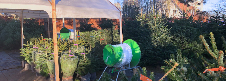 Julebesøg hos stadehandler i Virum