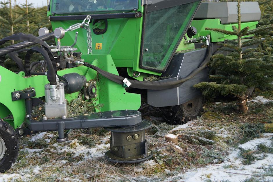 Stabklipning af juletræer